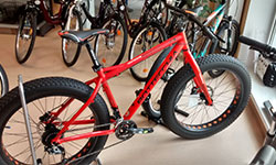 Bottecchia Bike